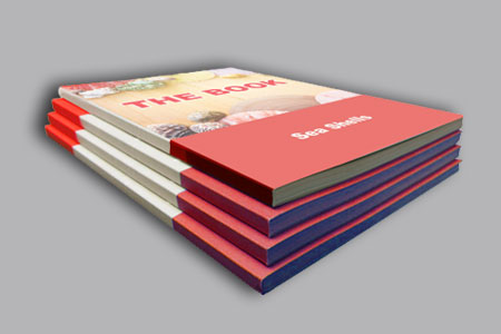 https://utharaprint.com.au/assets/products/117/5fd724fa3c1e0A4-Perfect-Bound-Booklets.jpg